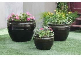 A Circular Planter With Green Dots