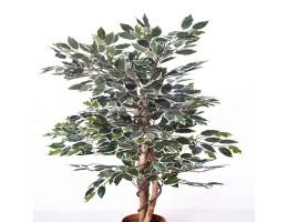 شجرة صناعية FICUS