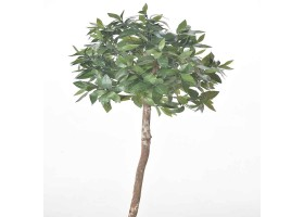 An Artificial BAY TREE