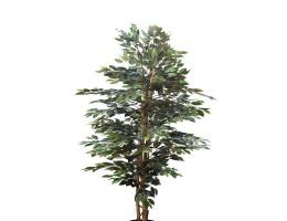 شجرة صناعية FICUS BENAJEMENAA BRADED