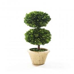 نبات مجفف شكل كروي طبقتين