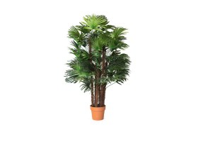 An Artificial Lady Palm