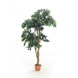 شجرة صناعية قرين فيكاس