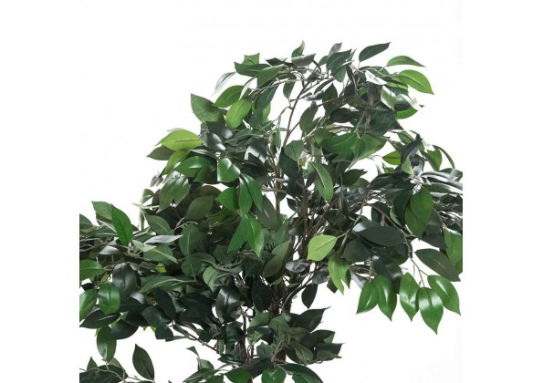 Green Ficus Artificial Tree