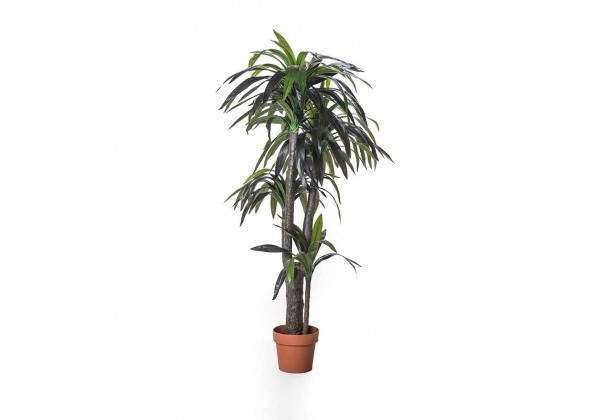 Artificial Dracaena  Tree