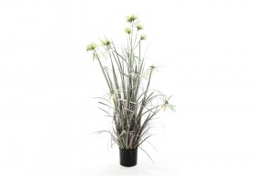 Plastic Artificial  Plant