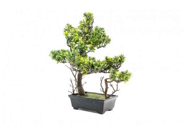 Artificial  Plant With Plastic Pot