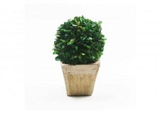نباتات صناعيه مجففة شكل كروي
