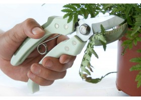 Scissor For Cutting And Refining Plants