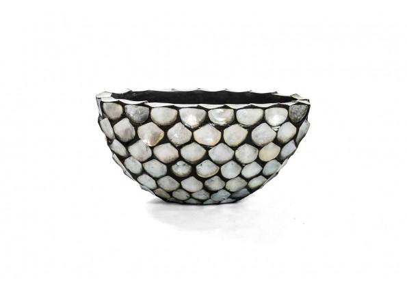Pot In A shell shape