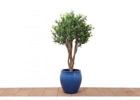 نبات صناعي زيتون
