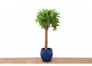 نبات صناعي  80LVS