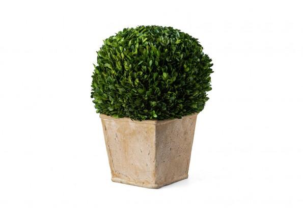 نباتات صناعيه