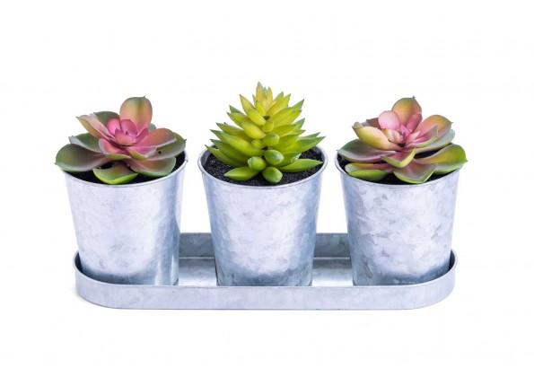 نبتات صناعية صغيرة مع 3 مراكن فضية