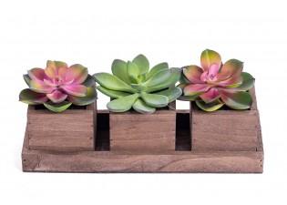 نباتات صناعية  صغيرة مع 3 مراكن خشبية