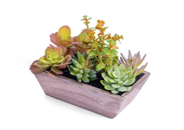 نباتات صناعية صغيرة مع مراكن خشبية