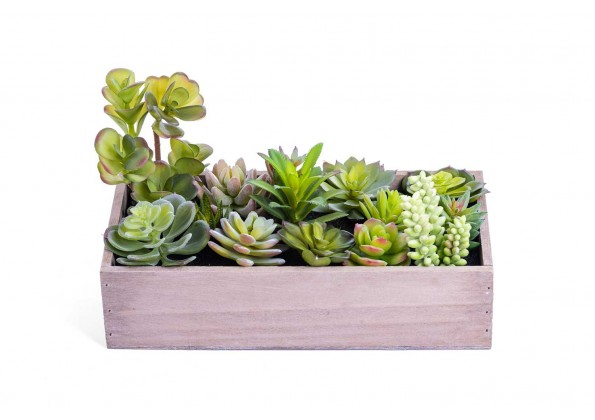 نباتات صناعية صغيرة مع مراكن خشبي مستطيل