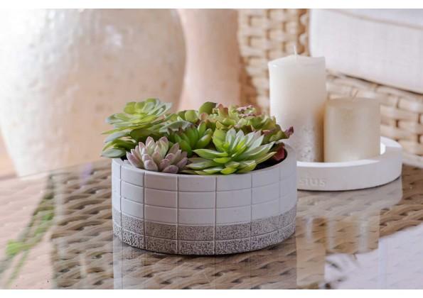 نباتات صناعية مع مركن دائري  أبيض