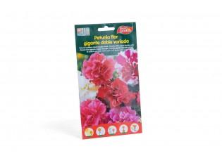بيتونيا متعددة مزدوجة الزهرة هجين مخلوط